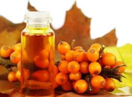 The oil of sea buckthorn